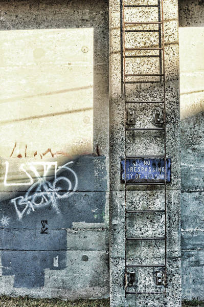 Ladders Photograph - Ladder by HD Connelly