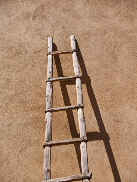 Photograph - Ladder by James Granberry