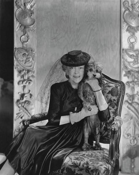 House Pet Photograph - Lady Mendl With Her Poodle by Horst P. Horst