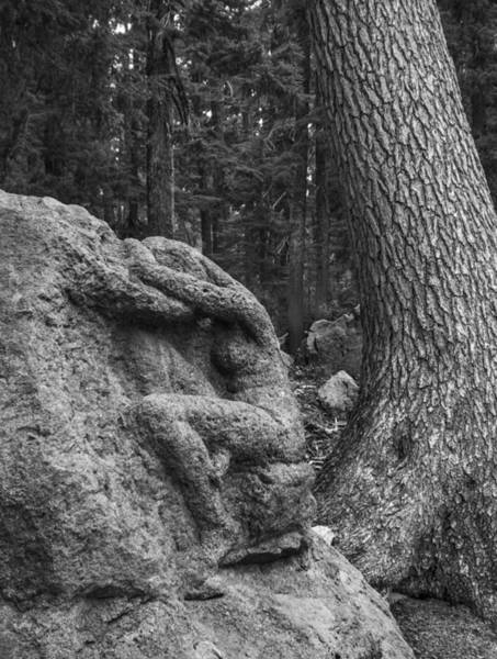 Photograph - Lady Of The Woods by Loree Johnson