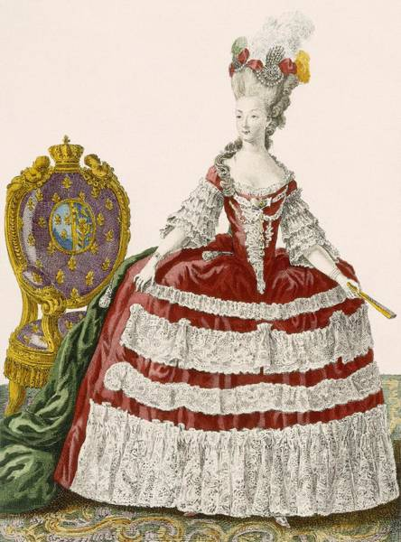 Royal Court Drawing - Ladys Court Gown In Dark Cherry by Pierre Thomas Le Clerc