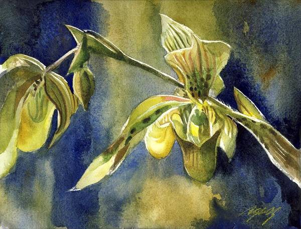 Painting - Ladyslipper Orchid With Blue by Alfred Ng