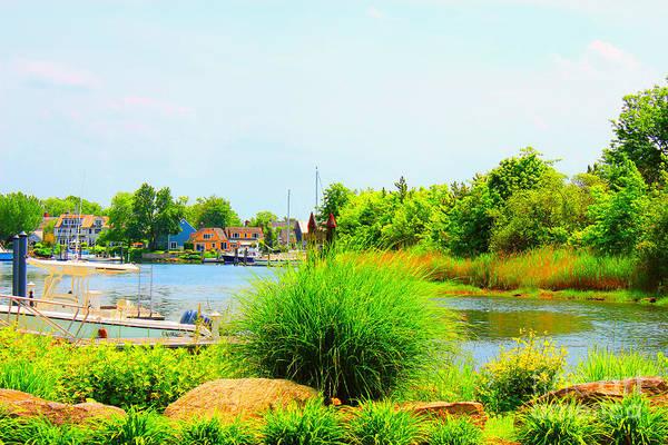 Stamford Photograph - Lagoon  by Judy Palkimas