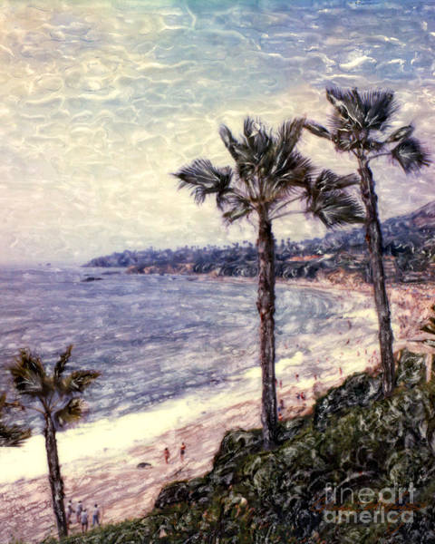 Photograph - Laguna Beach Palm Vista by Glenn McNary