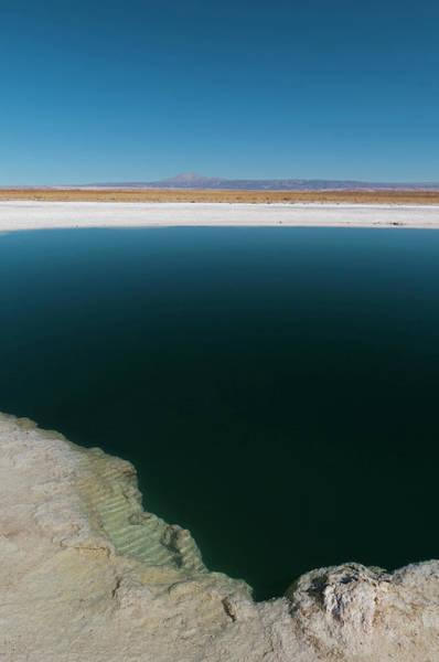 Lakes Region Photograph - Laguna Sejar, Salar De Atacama, Atacama by Sergio Pitamitz