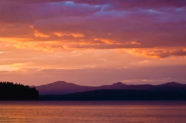 Photograph - Lake Almanor Sunset 2 by Sherri Meyer