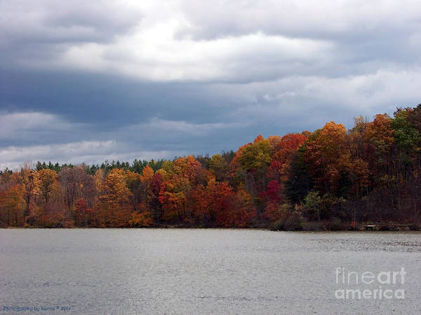 Photograph - Lake At Hinckley Reservation by Gena Weiser