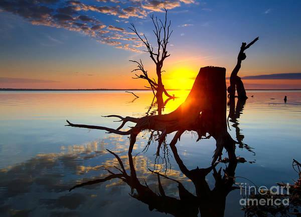 Wall Art - Photograph - Lake Bonney Sunrise by Bill  Robinson