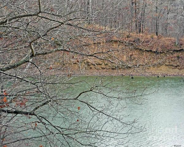 Photograph - Lake Dunn In Winter by Lizi Beard-Ward