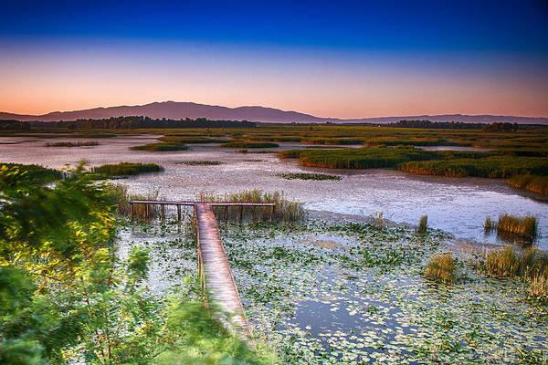 Photograph - Lake Efteni by Okan YILMAZ