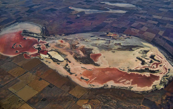 Photograph - Lake Eyre by Kim Andelkovic