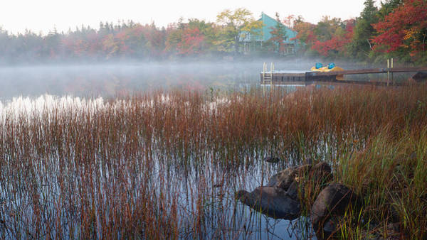 Photograph - Lake Fog At Dawn by Trever Miller