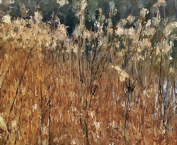 Daylight Digital Art - Lake Grass by Yury Malkov