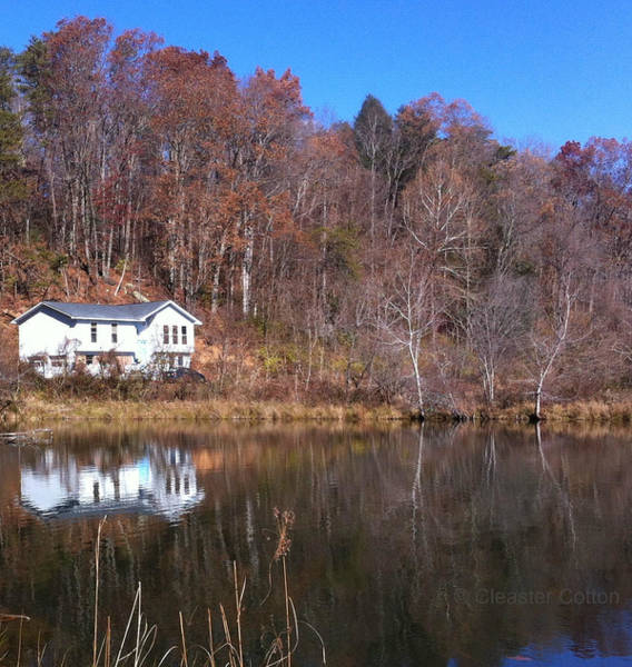 Photograph - Lake House Blue Sky by Cleaster Cotton