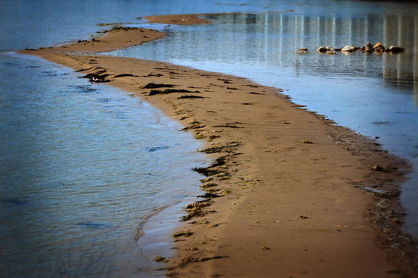 Photograph - Lake Huron Shore by Scott Hovind