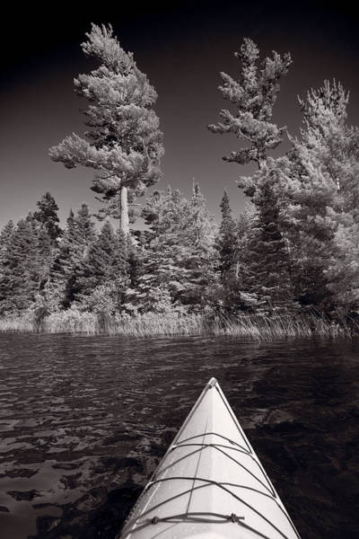 Lake Superior Wall Art - Photograph - Lake Kayaking Bw by Steve Gadomski