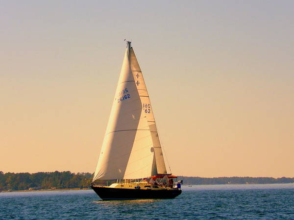Photograph - Lake Murray Sc Sailing by Lisa Wooten