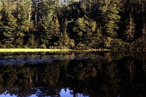 Cabot Trail Photograph - Lake O Law by George Cousins