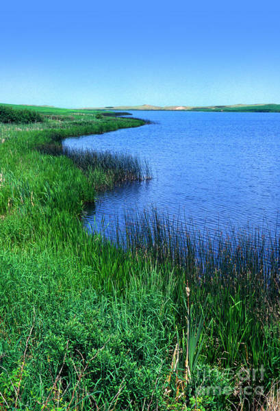 Photograph - Lake Of The Shining Waters by Thomas R Fletcher
