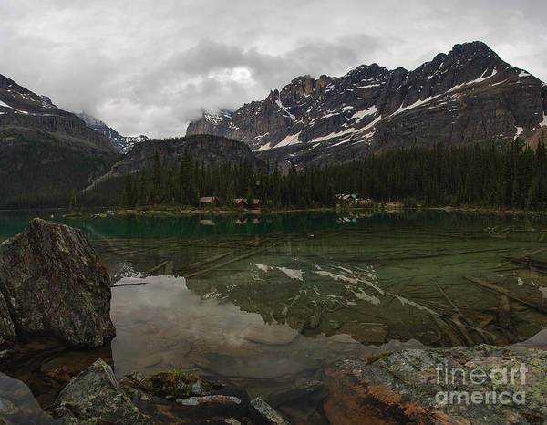 Photograph - Lake O'hara by Charles Kozierok