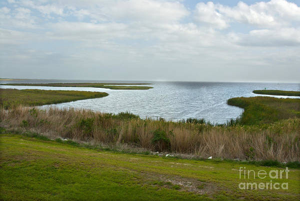 Lake Okeechobee Wall Art - Photograph - Lake Okeechobee by Mark Newman