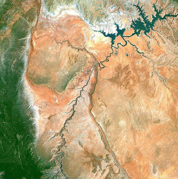 Wall Art - Photograph - Lake Powell And The Colorado River by Planetobserver/science Photo Library