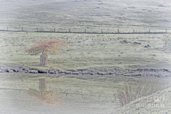 Digital Art - Lake Reflection by Elaine Teague