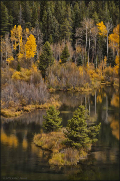 Photograph - Lake Reflection In Oil by Erika Fawcett
