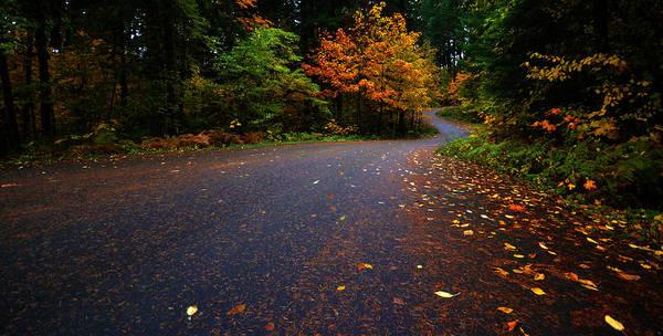 Photograph - Lake Road by Matt Hanson