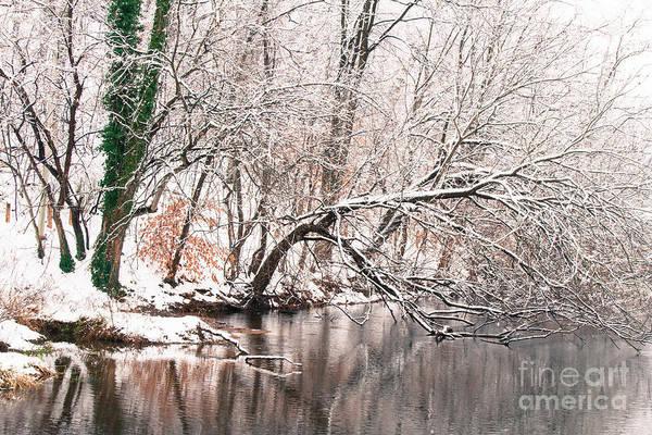 Photograph - Lake Roland 1 by Chris Scroggins