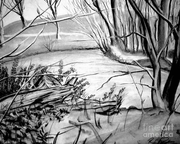 Light And Shadow Digital Art - Lake by Ryan Burton