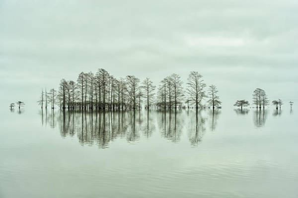 Foggy Photograph - Lake-shore Lineup Beauty by Liyun Yu