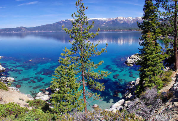 Wall Art - Photograph - Lake Tahoe Beauty by Scott McGuire
