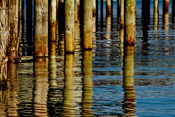 Northern California Wall Art - Photograph - Lake Tahoe Reflection by Bill Gallagher