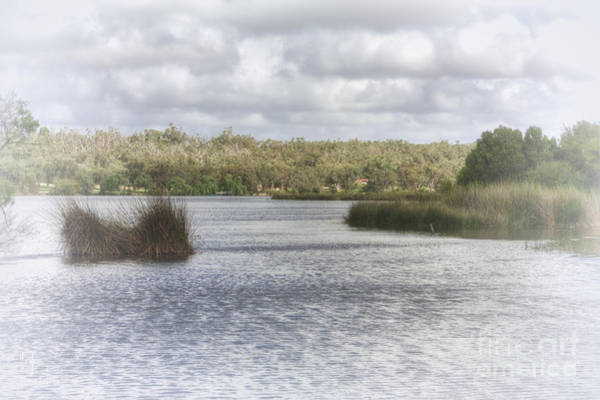 Photograph - Lake Wagardu by Elaine Teague