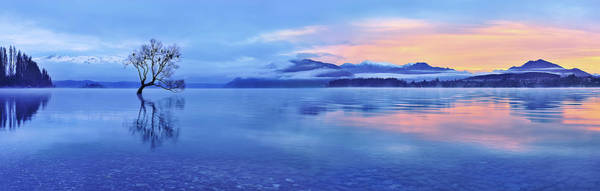 Alone Photograph - Lake Wanaka by Mei Xu