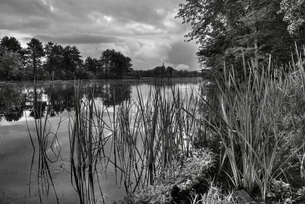 Photograph - Lake Wausau Backwaters by Dale Kauzlaric