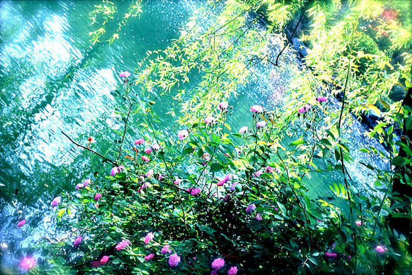 Photograph - Lake Whispers by HweeYen Ong