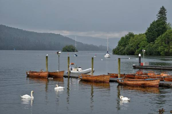 Swan Boats Photograph - Lake Windermere by Michael Biggs
