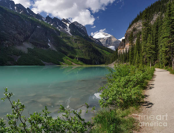 Photograph - Lakeshore Trail by Charles Kozierok