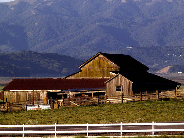 Sonoma Photograph - Lakeville Barn by Bill Gallagher