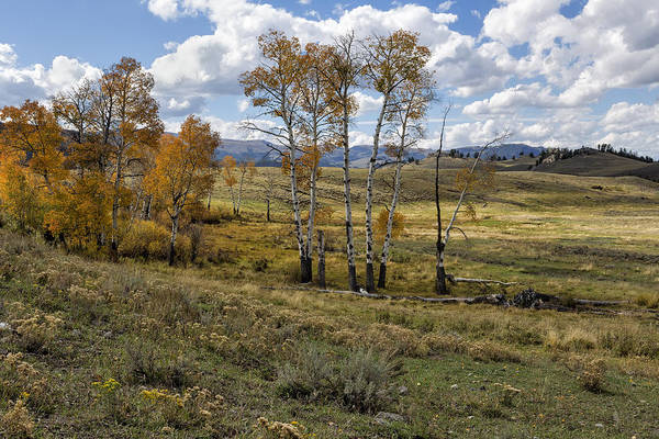 Photograph - Lamar Valley In The Fall - Yellowstone by Belinda Greb