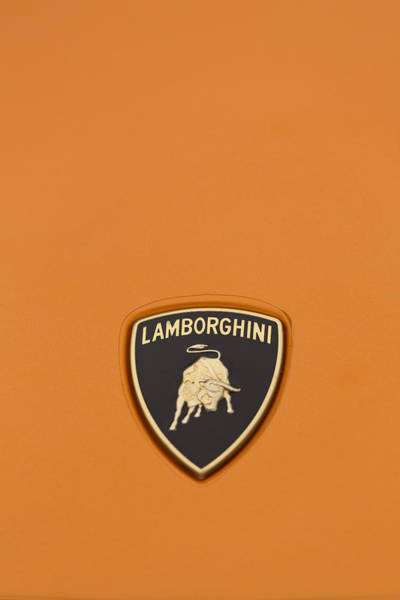 Photograph - Lambo Hood Ornament Orange by Scott Campbell
