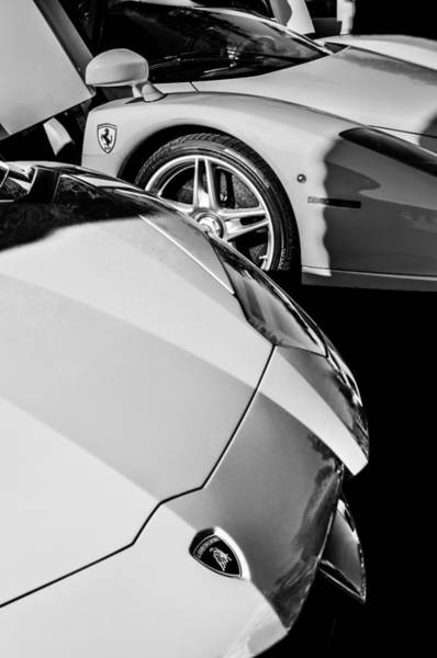 Photograph - Lamborghini - Ferrari Front Ends -0160bw by Jill Reger