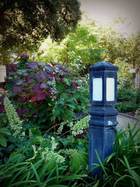 Photograph - Lamp In The Garden by Patricia Strand