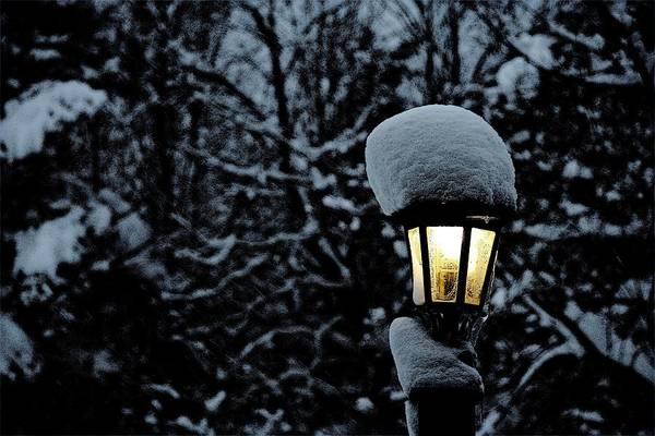 Lamp Light In Winter Art Print by Carolyn Reinhart