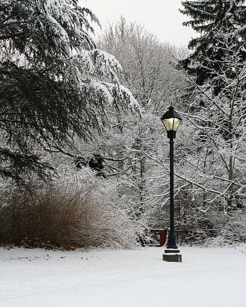 Photograph - Lamp Post In Winter by William Selander