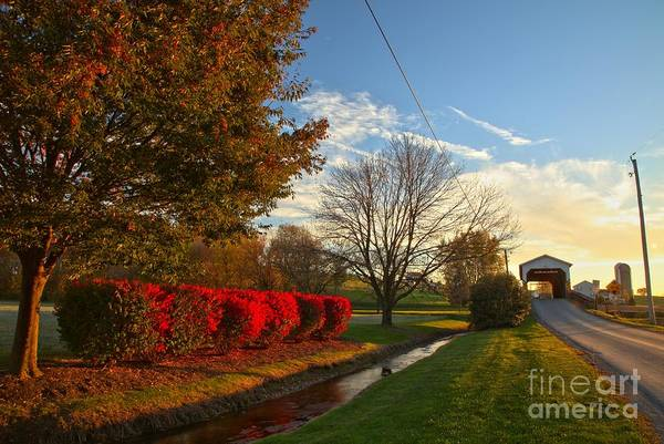 Photograph - Lancaster County Covered Bridge Landscape by Adam Jewell