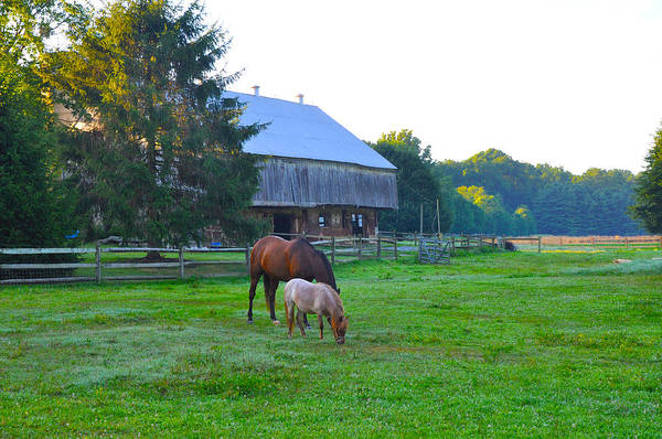 Lancaster County Photograph - Lancaster County Farm by Bill Cannon