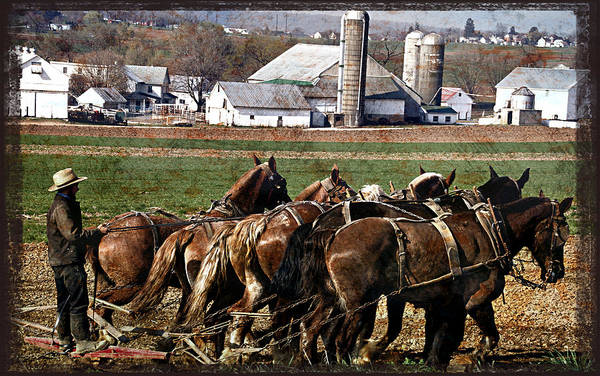 Photograph - Lancaster Plowing by Alice Gipson